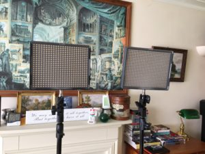 Aputure LED Lighting used on Yayu and The Wimborne Folk Festival